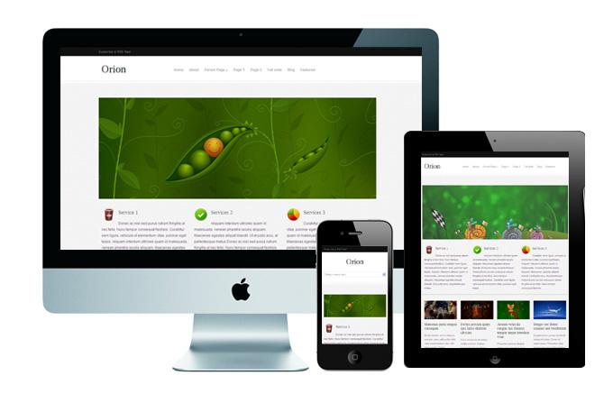 responsive-Wordpress-theme-Orion