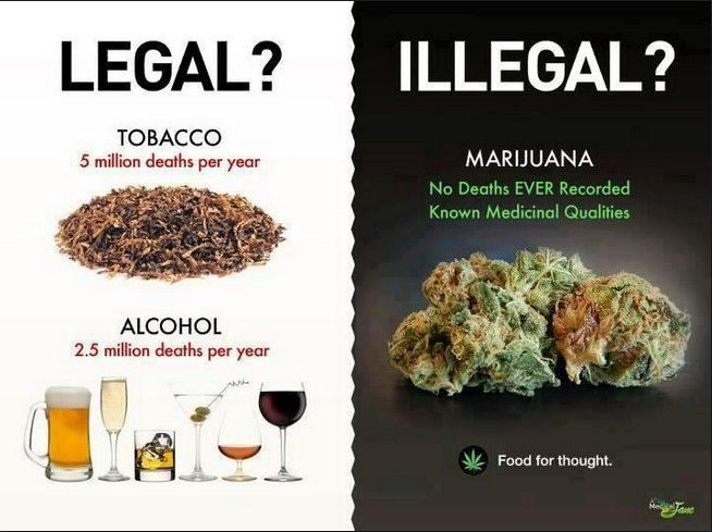 Buying Legal Drugs 3